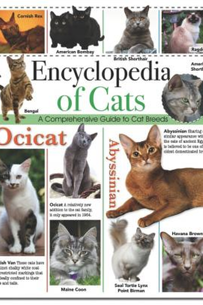 Encyclopedia of Cats. A Comprehensive Guide